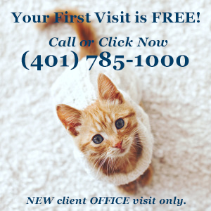 First office visit is free at Rhode Island Animal Medical Center